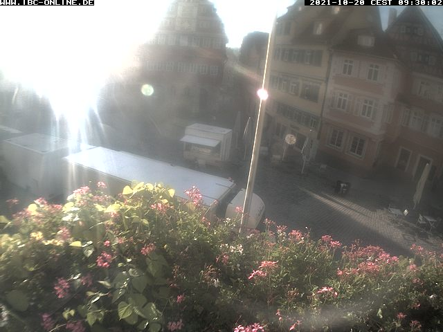 Bilder der Webcam